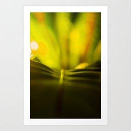 The Night Garden Glow Art Print