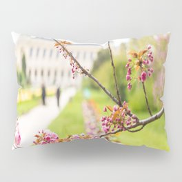 Paris In Springtime Pillow Sham