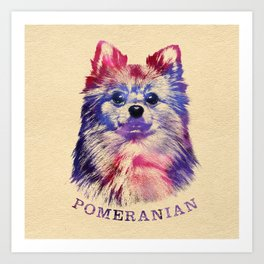 Cute Pomeranian German Spitz Art Print