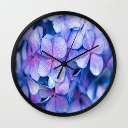 Hydrangea Flowers : Periwinkle Blue Lavender Pink Wall Clock