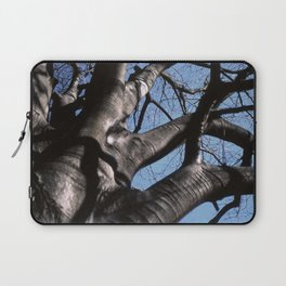 maple tree in winter Laptop Sleeve