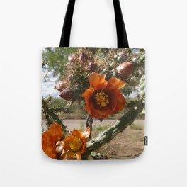 orange cholla cactus flower Tote Bag
