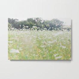 In a Field of Wildflowers Metal Print