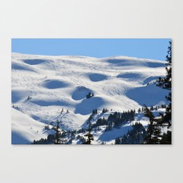 Back-Country Skiing - II Canvas Print