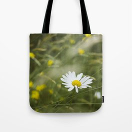 Flower. Oxeye Daisy (Leucanthemum vulgare) growing wild. Tote Bag