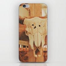 Cowboy Ranch iPhone & iPod Skin