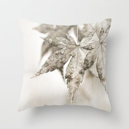 One Misty, Moisty Morning Throw Pillow