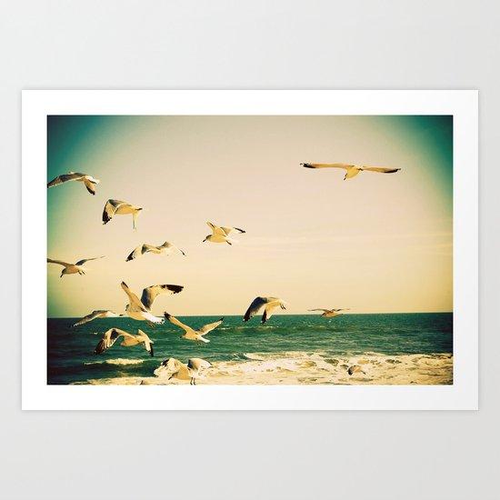 Gulls Series 1 Art Print