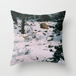 Coyotes on the hunt square version Throw Pillow