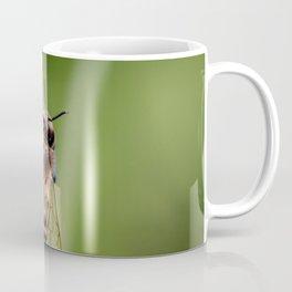 Hover Fly Bee Coffee Mug