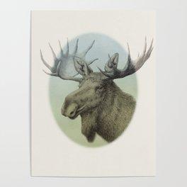 Moose head elk Poster