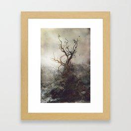 Cloutie Framed Art Print