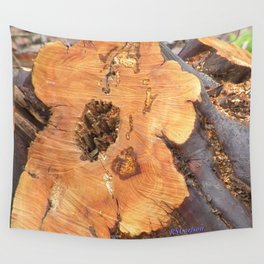 TEXTURES - Manzanita in Drought Conditions #2 Wall Tapestry