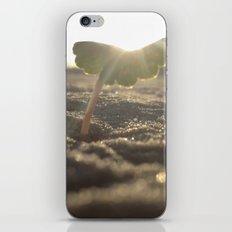 Myrtle Beach iPhone & iPod Skin