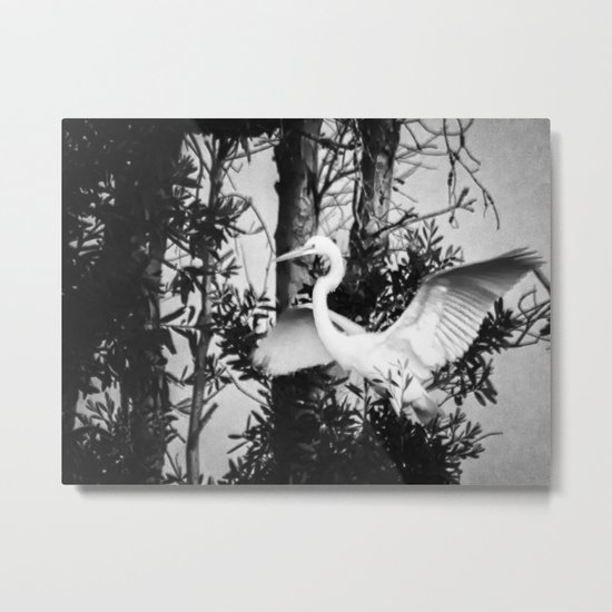 Great Egret In The Trees Metal Print