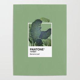 Pantone Series – Banana Leaf Poster
