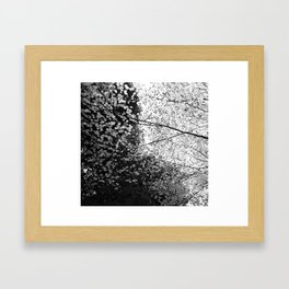 Blend Framed Art Print