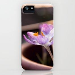 Crochi al tramonto iPhone Case