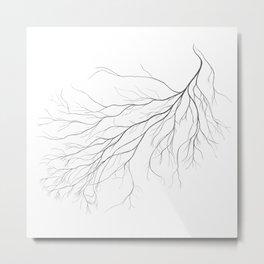Mycelium (pencil drawing) Metal Print