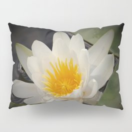 White Waterlily On A Dark Background #decor #society6 Pillow Sham