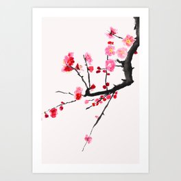 red plum flower red background Art Print