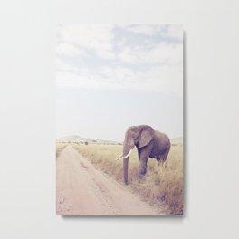Serengeti II Metal Print