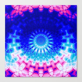 Concentric Field (blue-pink) Canvas Print