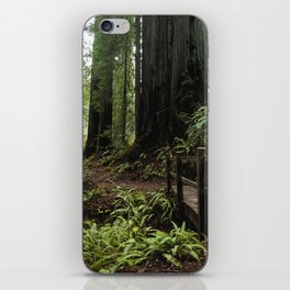 Redwood Roaming - California Wanderlust iPhone Skin
