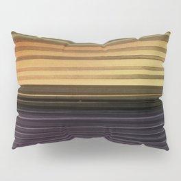 Amanda Wants Stripes Pillow Sham