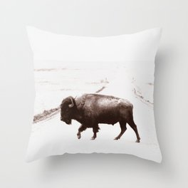 Bison 3 Throw Pillow