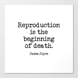 Memento Mori (James Joyce quote from A Portrait of the Artist as a Young Man) Canvas Print