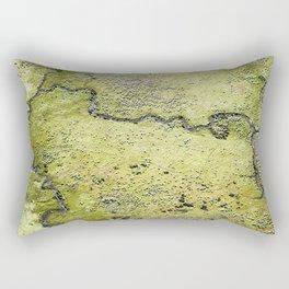 """""""Terra Firma"""" 3/13 (2013) Rectangular Pillow"""