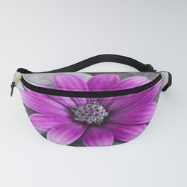 Zen Pink Daisy Pebble Still Life Fanny Pack
