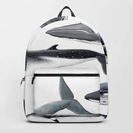 Whales and right whale Backpack