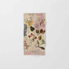Botanical Study #1, Vintage Botanical Illustration Collage Hand & Bath Towel
