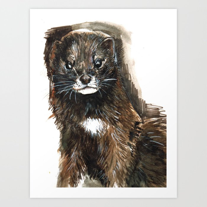European Mink Art Print