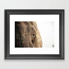 Elephant, into the wild.  Framed Art Print