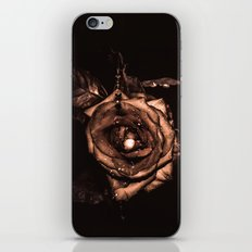 (he called me) the Wild rose iPhone & iPod Skin