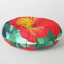 Tithonia Mexican Sunflower Floor Pillow