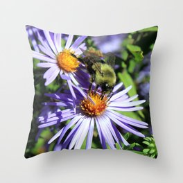 Pollen Dusted Bee on Asters Throw Pillow