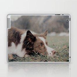 Kiva the dog Laptop & iPad Skin