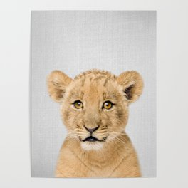 Baby Lion - Colorful Poster