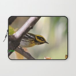 A Townsend's Warbler in a sycamore tree. Laptop Sleeve