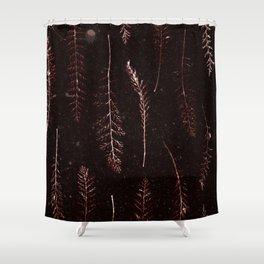 Botanical Pattern 3 (brown) Shower Curtain