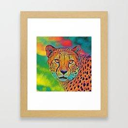 AnimalColor_Cheetah_001 Framed Art Print