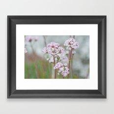 Tender Spring Flowers Framed Art Print