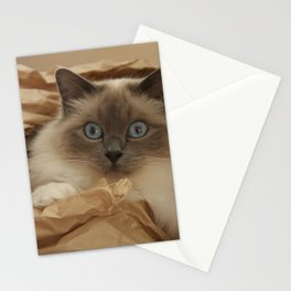 Cat in a Box Stationery Cards