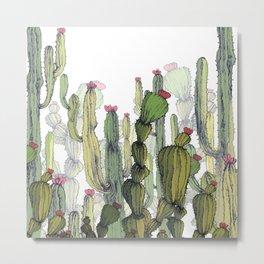 Dry cactus Metal Print