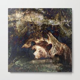 Long Winters Nap I (Hibernating Bear) Metal Print