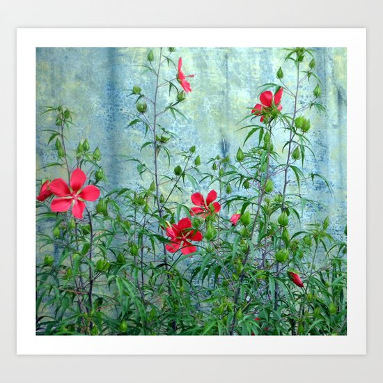 Wall Flowers Art Print
